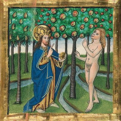 Baumverbot (Gn 2,16-17) – Illustration aus der Münchener Furtmeyr-Bibel, Blatt 10 ra (1), Quelle: Bayrische Staatsbibliothek, Lizenz CC BY-NC-SA