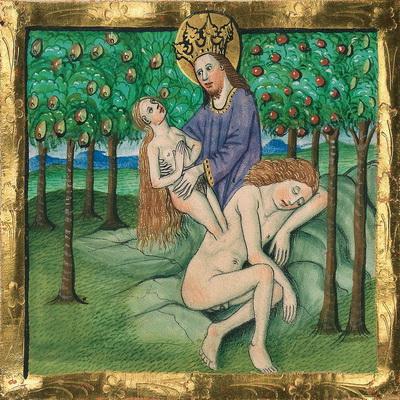 Erschaffung Evas (Gn 2,21-22) – Illustration aus der Münchener Furtmeyr-Bibel,  Blatt 10 rb (1), Quelle: Bayrische Staatsbibliothek, Lizenz CC BY-NC-SA
