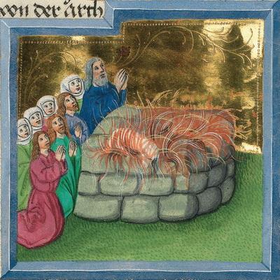 Noahs Dankopfer (Gen 8,20) – Illustration aus der Münchener Furtmeyr-Bibel, Blatt 14 va, Quelle: Bayrische Staatsbibliothek, Lizenz CC BY-NC-SA
